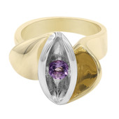 Zilveren ring met een amethist (MONOSONO COLLECTION)
