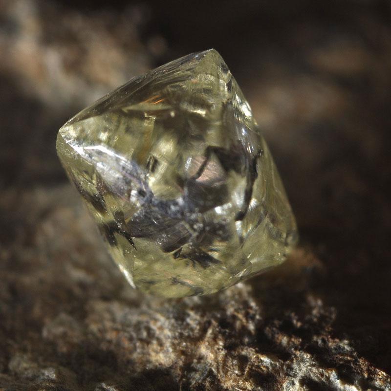 Diamant Soort